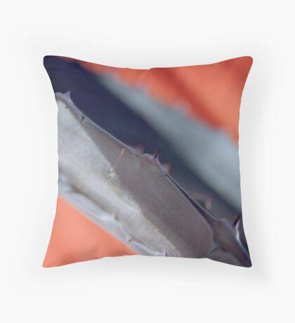 Agave 3-Barrio Viejo-Tucson Throw Pillow
