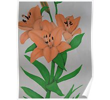 Painted Lilies Collection #10 Poster