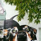 Graffiti Dog! by Roz McQuillan