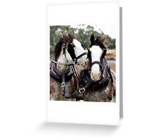 Clydesdale and Heavy Horse Festival 2010 Greeting Card