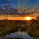 Sunset over the Everglades by Bill Wetmore
