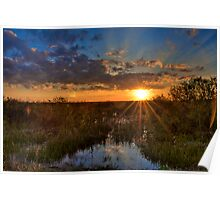 Sunset over the Everglades Poster