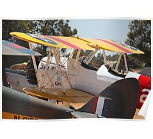 Stearman in a Pack Poster