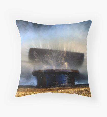 The Baffle Plate Throw Pillow