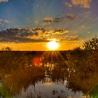 Solar Flare by njordphoto