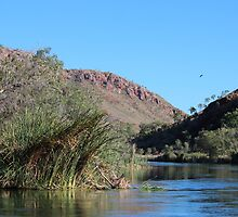 Ord River Bank by KazM