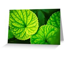 Green Leaf Abstract Greeting Card