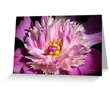 Pink Peony Art Greeting Card