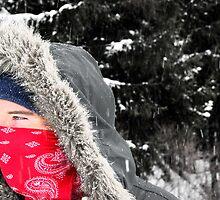 Snow Gazing by William Herpel