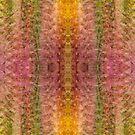 10 multiplied by 4 by JHRphotoART