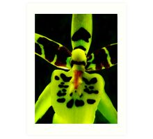Storm Trooper - A New Perspective on Orchid Life Art Print