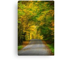 Tunnel of Trees Fall Landscape Canvas Print