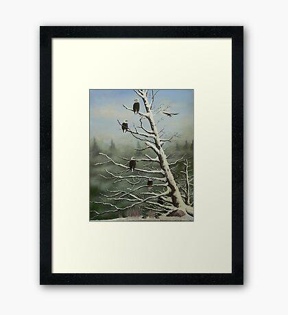 Birds of a feather... Framed Print