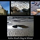 Robin Hood's Bay in Winter collage by patjila