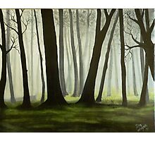 Misty forrest Photographic Print