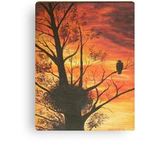 eagle by sunset Canvas Print