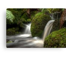 Cold Waters Canvas Print