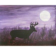 Moon light walk Photographic Print