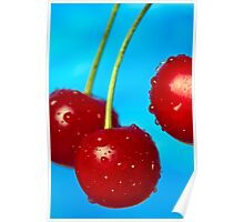Morello Cherries Close Up Poster