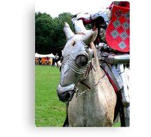 A horse, a horse, my kingdom for a horse Canvas Print