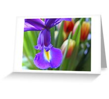 The Kiss of Springtime Greeting Card