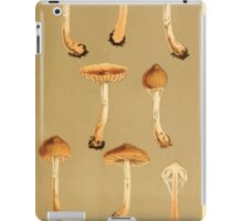 Illustrations of British Fungi by Mordecai Cubitt Cook 1891 V6 0089 CORTINARIUS  TELAMONIA  MICROCYCLUS iPad Case/Skin