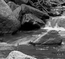 Flow with it in Black and White by DeeCarmack