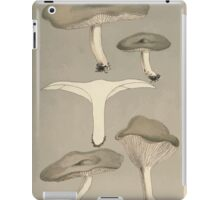 Illustrations of British Fungi by Mordecai Cubitt Cook 1891 V1 0563 AGARiCUS  CLITOCYBE  ODORUS iPad Case/Skin