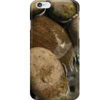 Babbling Brook iPhone Case/Skin