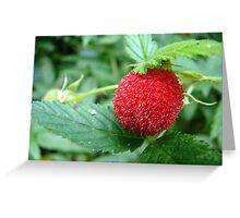 Ripe - Native Raspberry Fruit  Greeting Card