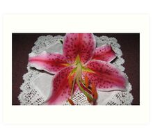 Bright Pink Lilium on White Doylie. Art Print
