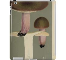 Illustrations of British Fungi by Mordecai Cubitt Cook 1891 V7 0339 RUSSULA  RIGIDAE  OLIVACEA iPad Case/Skin
