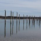 Gull Poles by Gilda Axelrod