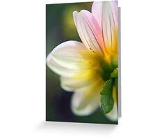 Striped Dalia Greeting Card