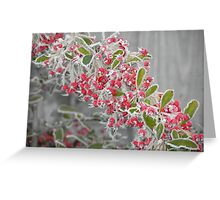 Frozen Berries Greeting Card