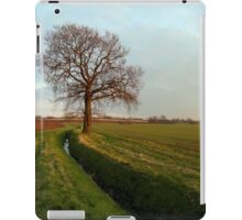 Spring is on its way iPad Case/Skin