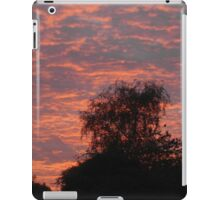Peach Sky iPad Case/Skin