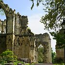 St Mary's Abbey Ruins, York ii by BronReid