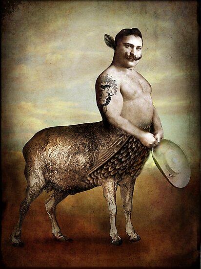 Cowboy by Catrin Welz-Stein
