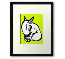 Shy English Bull Terrier  Framed Print