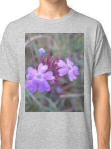 Purple field flower Classic T-Shirt