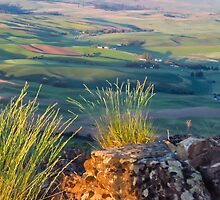 Palouse from Steptoe butte by Linda Sparks