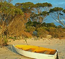 Boat on a Beach by Stephen Dean
