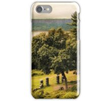 The Palisades iPhone Case/Skin
