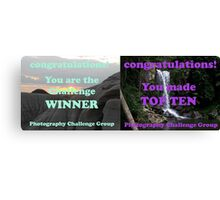 Winner and Top Ten. Will be split if I win! Canvas Print