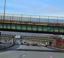 Driving Through Staten Island by Gilda Axelrod