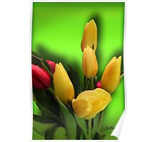 Shades of Spring Poster