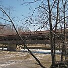 Harpersfield Covered Bridge by Monnie Ryan