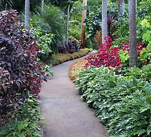 Garden Path by Wayne  Nixon  (W E NIXON PHOTOGRAPHY)