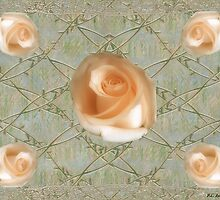 Penny Postcard Roses by RC deWinter